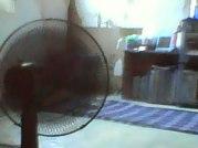 ample ventilation